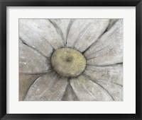 Close-Up Daisy II Framed Print