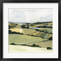 Patchy Landscape II Framed Print