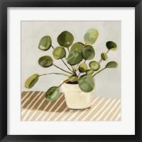 Plant on Stripes I Framed Print