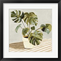 Plant on Stripes II Framed Print