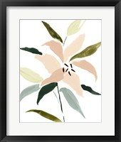 Lily Abstracted I Framed Print