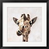 Giraffe's Gaze II Framed Print