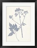 Framed Navy Botanicals IV