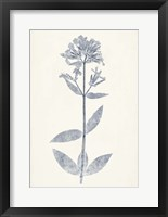 Navy Botanicals V Framed Print
