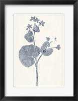Navy Botanicals VI Framed Print