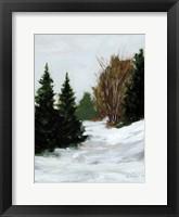 Framed Winter on Grand Mesa