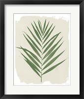 Nature By the Lake Frond III Cream Framed Print