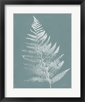 Nature by the Lake Ferns VI Gray Mist Crop Framed Print
