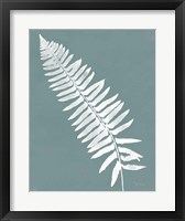 Nature by the Lake Ferns IV Gray Mist Crop Framed Print