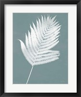 Nature by the Lake Ferns III Gray Mist Crop Framed Print