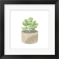 Simple Succulent II Framed Print