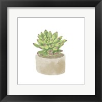 Simple Succulent III Framed Print