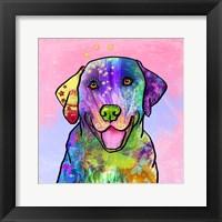 Framed Colorful Pets IV