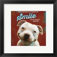 Framed Pet Sentiment I-Smile