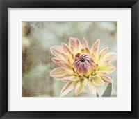 Framed Impression Flower