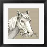 Framed Horse