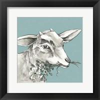 Framed Goat
