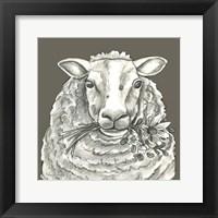 Framed Sheep
