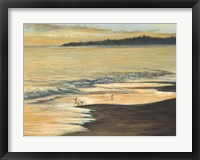 Framed Coastline