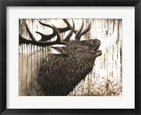 Framed Bugling Bull Elk