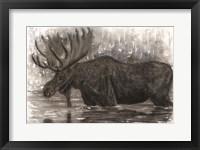 Framed Majestic Moose