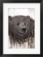 Framed Giant Kodiak