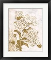 Brass Beauty 1 Framed Print