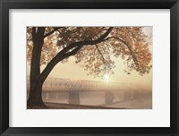 Framed Golden Moments