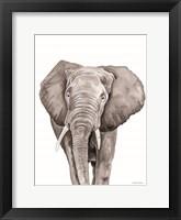 Safari Elephant Peek-a-boo Framed Print