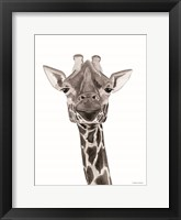 Safari Giraffe Peek-a-boo Framed Print