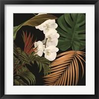 Framed Jungle Night II