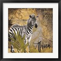 Taste of Africa Zebra Framed Print