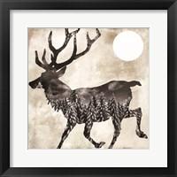Going Wild Deer Framed Print