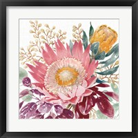 Petal Passion VIII Framed Print
