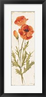 Poppy Panel Light Framed Print