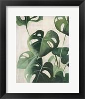Tropical Study IV Framed Print