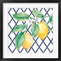 Everyday Chinoiserie Lemons II Framed Print