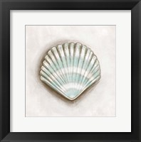 Shell III Framed Print