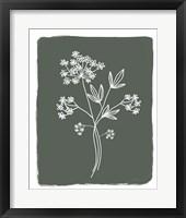 Green Botanical I Framed Print