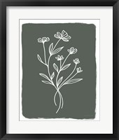 Green Botanical II Framed Print