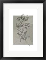 Framed Sage Floral