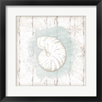 Calming Coastal Shell Framed Print