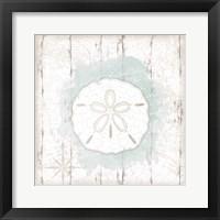 Calming Coastal Sand Dollar Framed Print