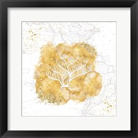 Golden Coral IV Framed Print