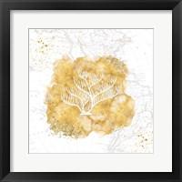 Golden Coral IV Framed Print