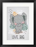 Framed Live Big
