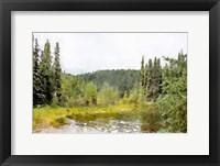 Framed Mountain Paradise No. 1