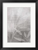 Leafy Parts No. 2 Framed Print