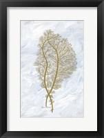 Feathery Sea Fern II Framed Print