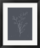 Soft Bouquet II Framed Print